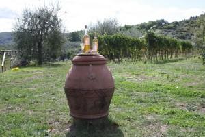 VinSanto Podere Somigli.3